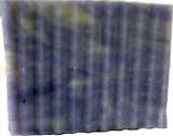 Gilda's Lilacs 95/5 Soap